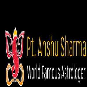 Astrologer Anshu Sharma.jpg